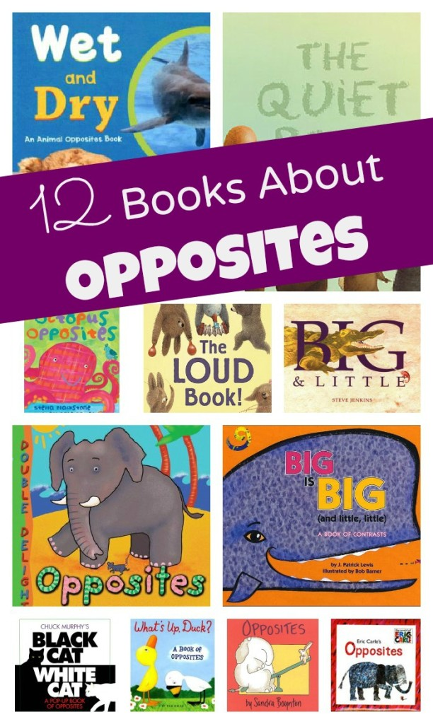 12 Books About Opposites