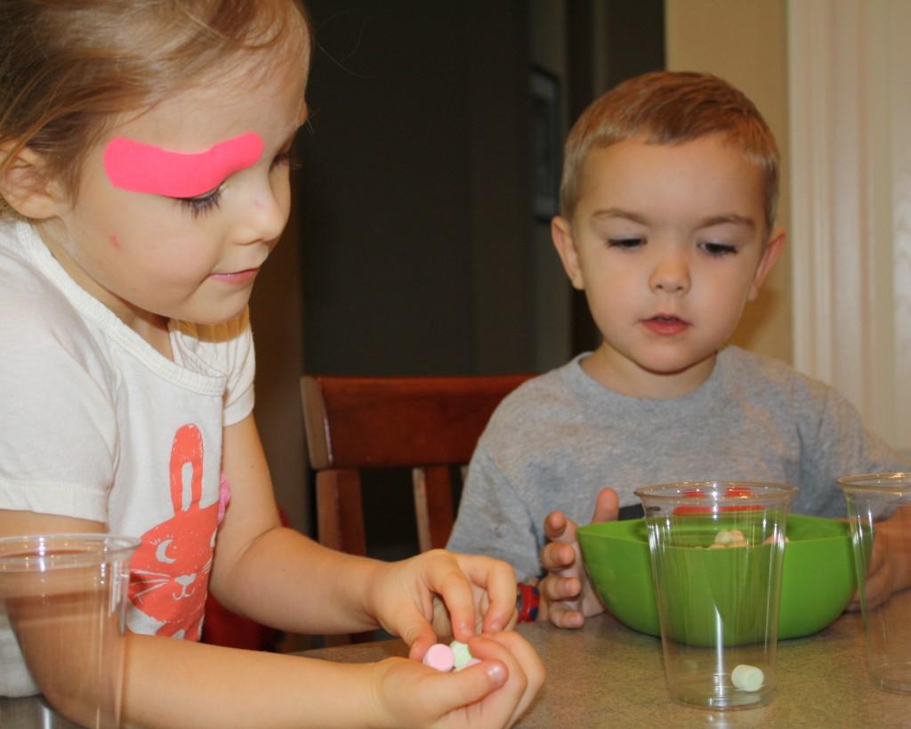 Marshmallow Preschool Activities