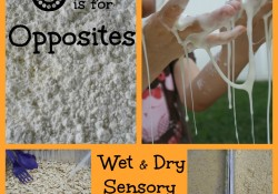 O is for Opposites: Wet and Dry Sensory Play