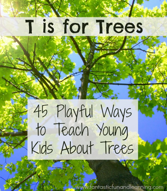 45 Playful Ways to Teach Young Kids About Trees-Full of tree activities and fun projects for kids learning about trees