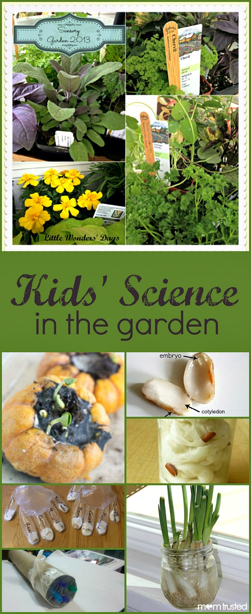 Kids' Science in the Garden-Science Experiments and Activities for Kids