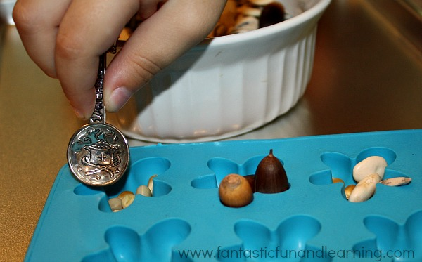 Seed Activity-Scooping