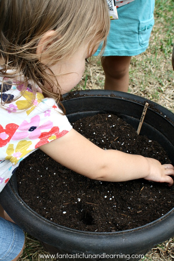 Starting Seeds with Toddlers