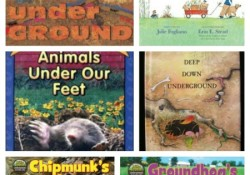 Books About Underground Animals