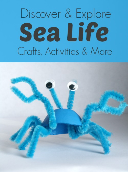 egg carton sea life recycled craft