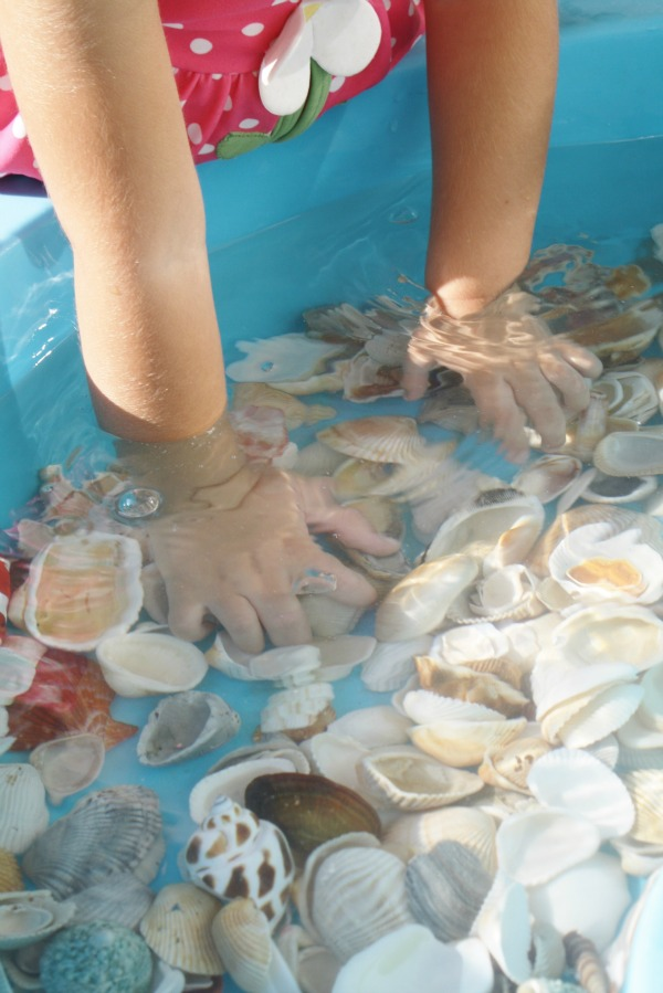 Shells and Water Toddler Play