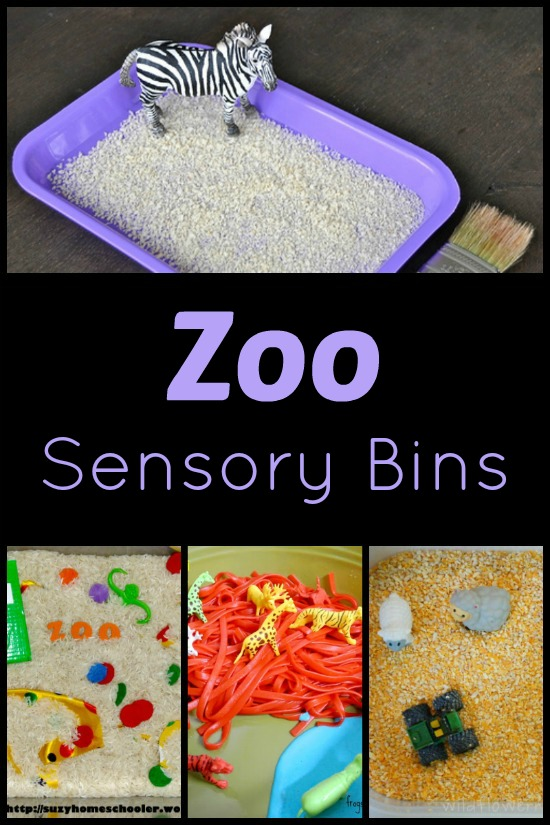 Zoo Theme Sensory Play