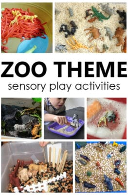 Zoo Theme Sensory Play. Create a fun zoo sensory bin for toddler and preschool zoo theme sensory play. Engaging way to learn about animals!