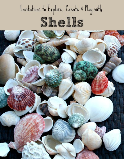 Shell Activities For Kids