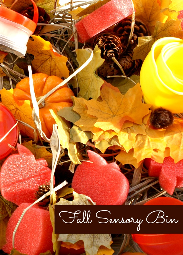 Fall Sensory Bin and Learning Activities