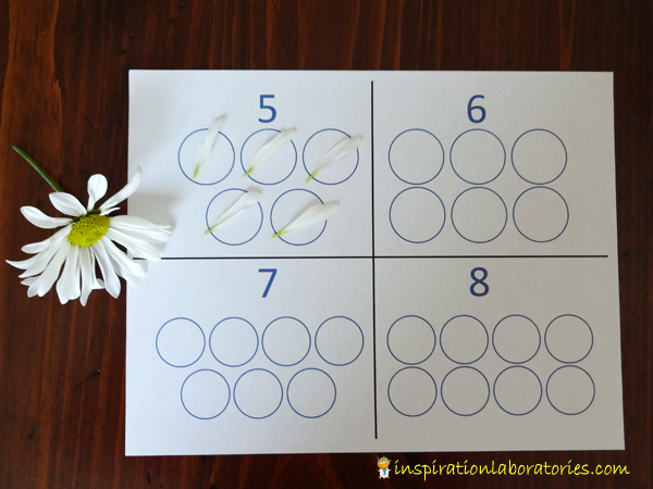 flowers-number-circles