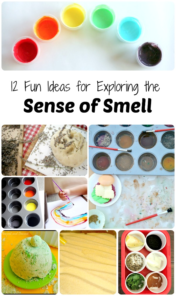Fun Ideas for Exploring the Sense of Smell