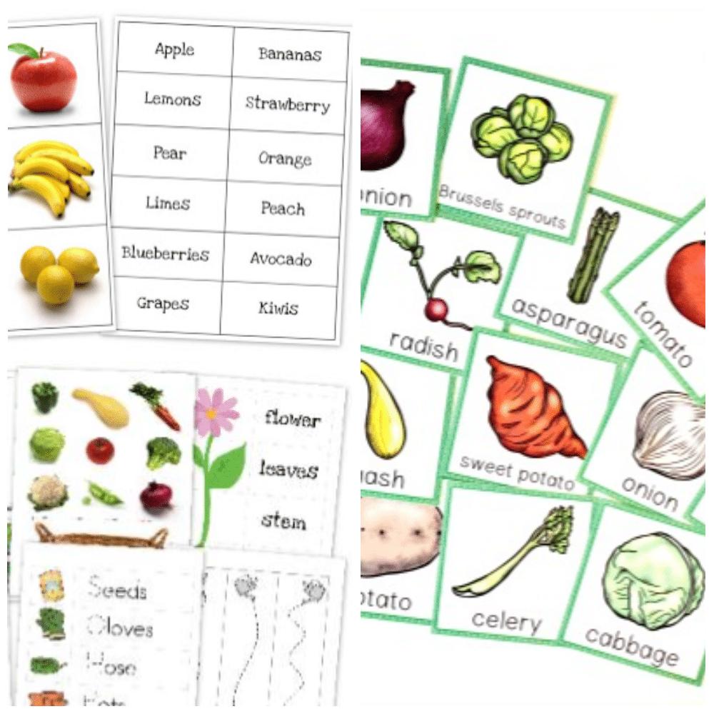 50 Vegetable Activities For Kids In Preschool And Kindergarten