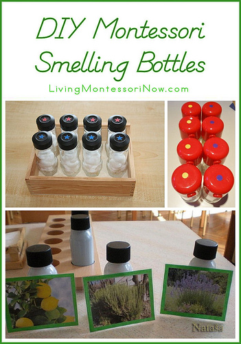 Fun Ideas For Exploring The Sense Of Smell