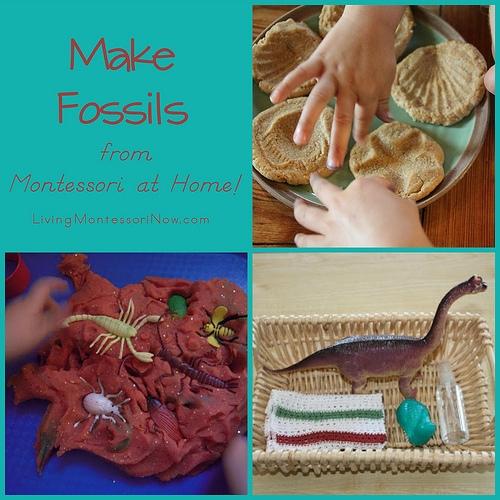 Make-Fossils