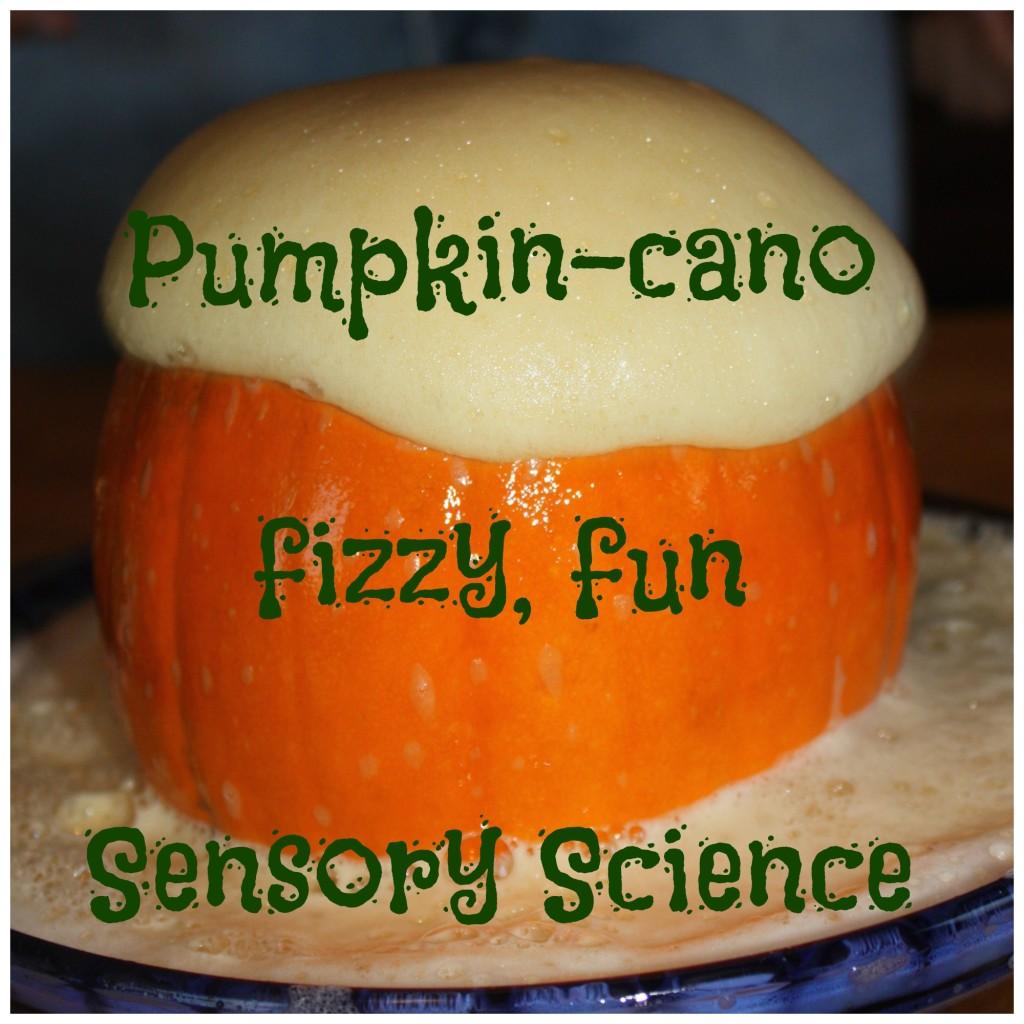 pumpkin-cano