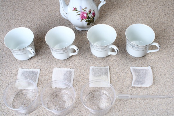 Tea Taste Test and Mixing Science Experiment