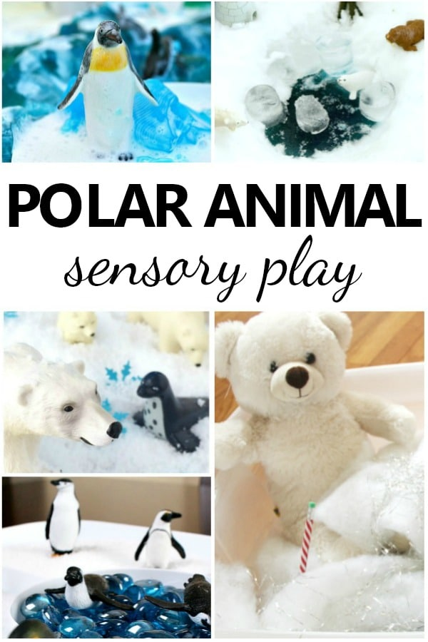 Polar Animal Sensory Play and Small World Ideas for Preschoolers