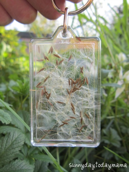 Dandelion Wishes Key Chain
