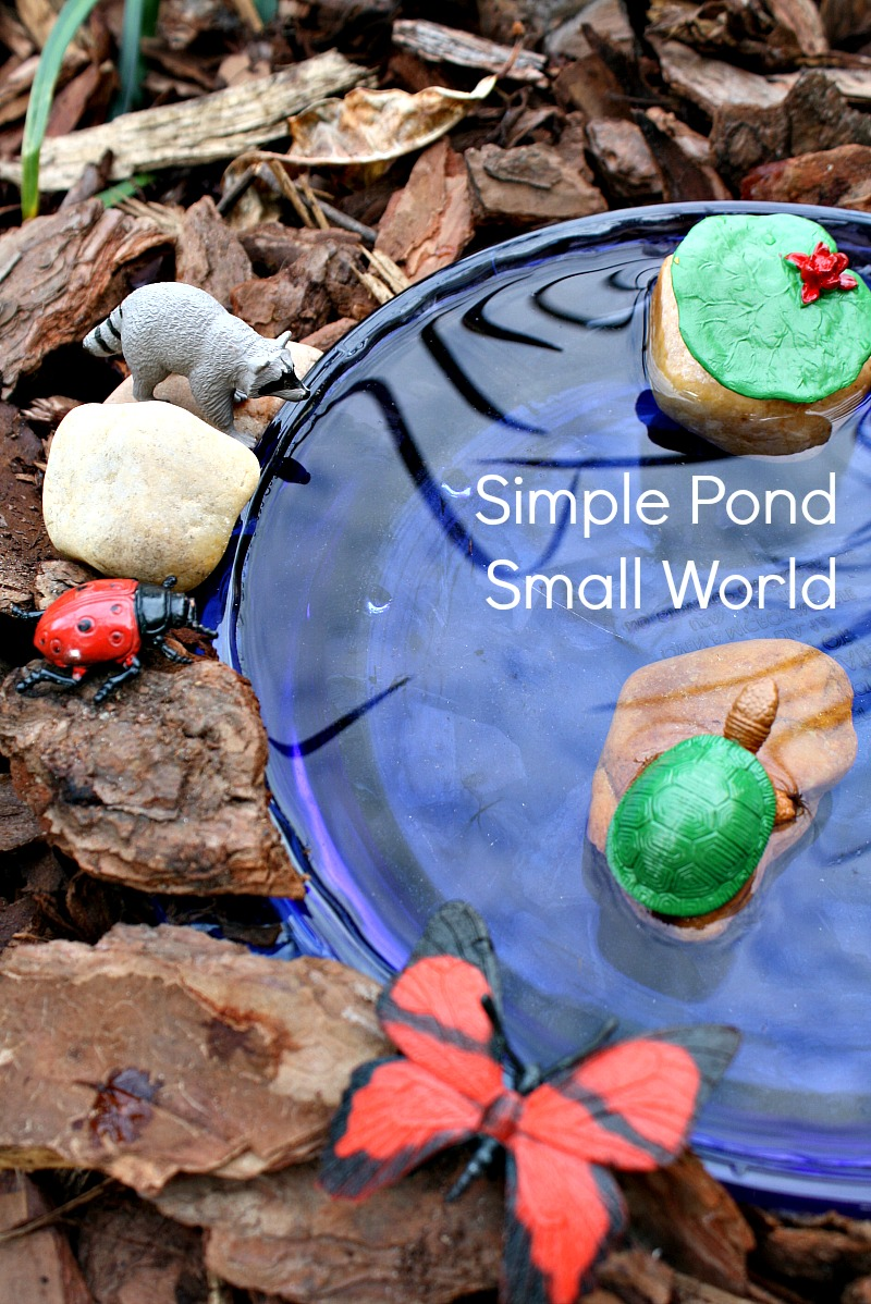 Simple Pond Small World
