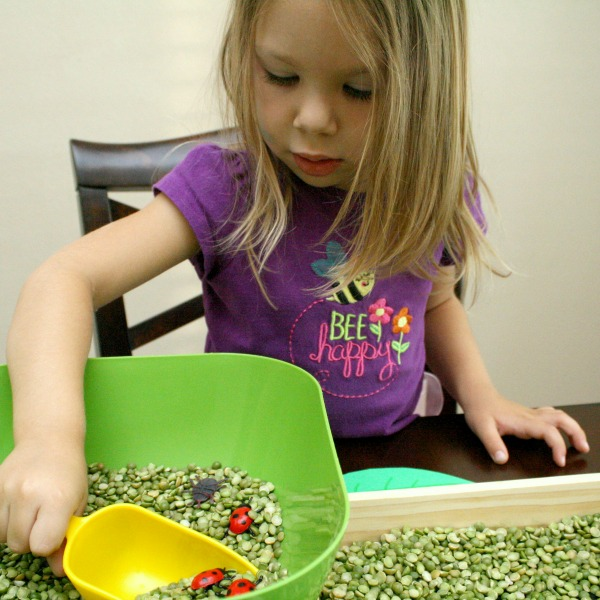 Counting Ladybugs-Toddler and Preschool Math Activity