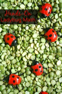 Hands-On Ladybug Math Ideas for Kids-Counting, Addition, Comparing