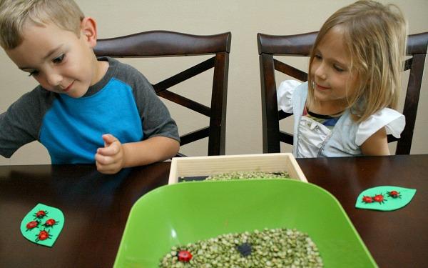 Ladybug Math Activity for Partners