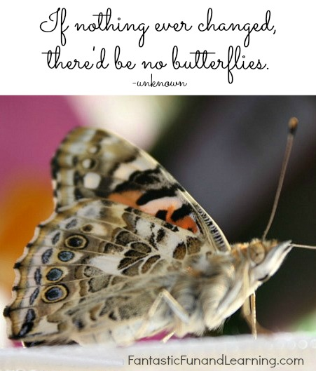 If Nothing Ever Changed There'd be No Butterflies from Fantastic Fun and Learning