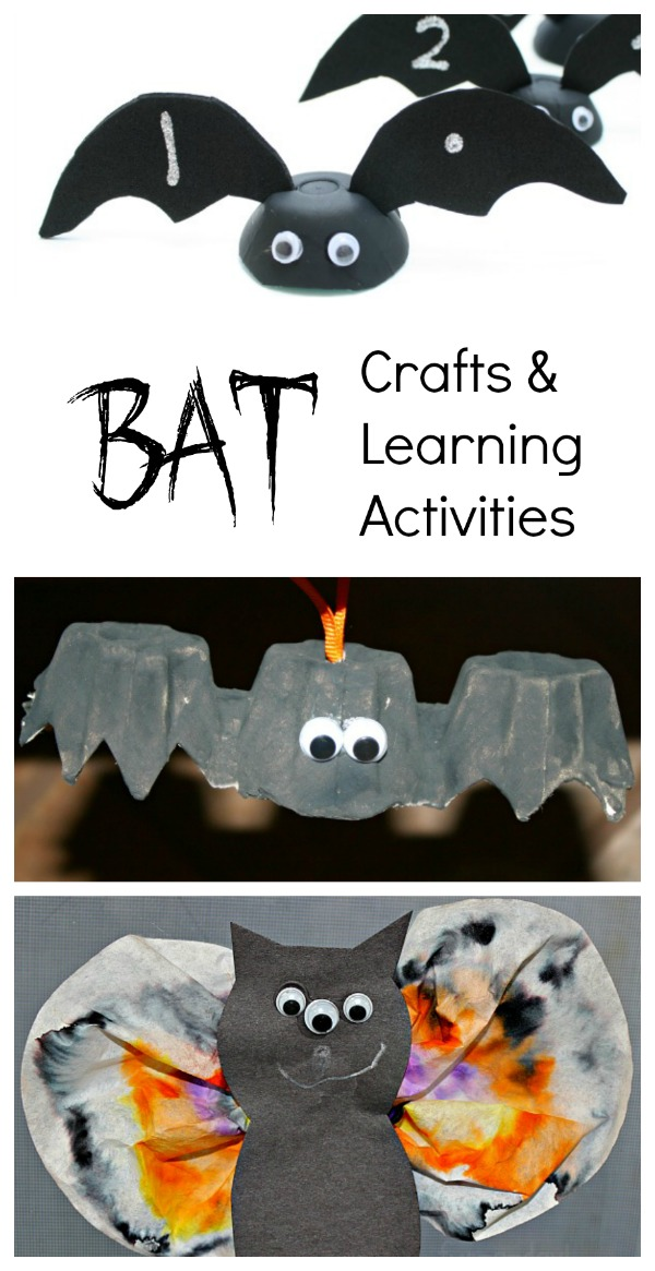Bat Books for Kids