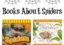 16 Fiction and Nonfiction Books About Spiders. Click through to see the full list with book summaries and activity suggestions