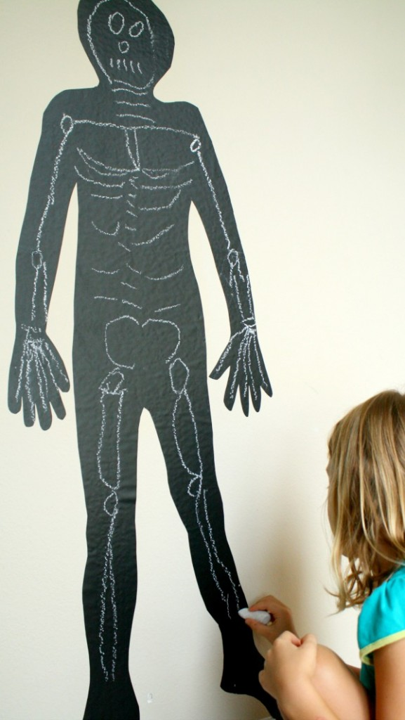 Chalkboard Skeleton Activity