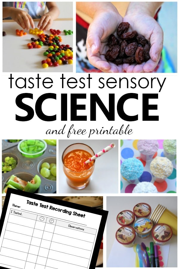 15 Taste Test Activities and Sensory Science Experiments for 5 Senses Theme with Free Printable Taste Test Recording Sheet