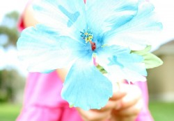 Letter flowers for preschool alphabet activity
