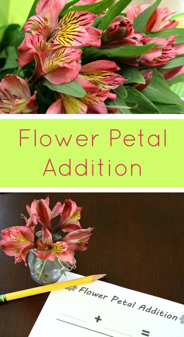 Flower Petal Addition Math Activity for Kindergarten