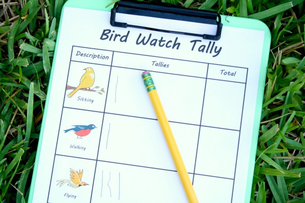 Outdoor Activity -Bird Watch with Free Printable