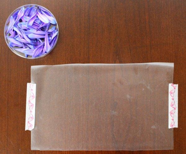 Materials for flower petal card