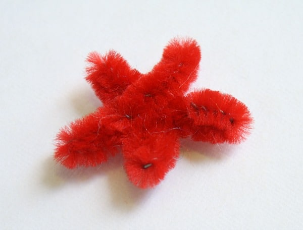 Pipe Cleaner Star