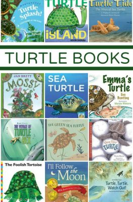 Turtle Books~Great fiction and nonfiction books to teach kids about turtles