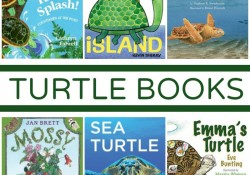 Turtle Books