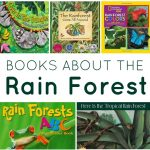 FB-rain forest books
