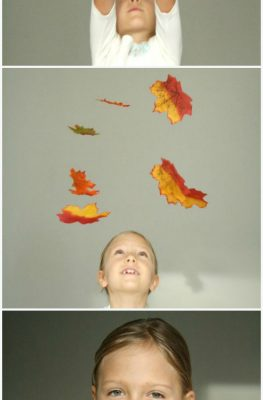 Falling Leaves Math Activity