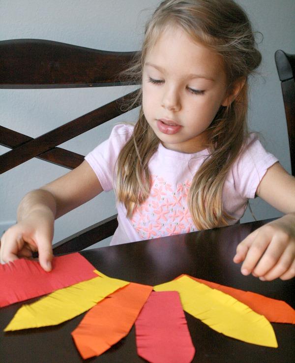 Turkey Feather Patterns