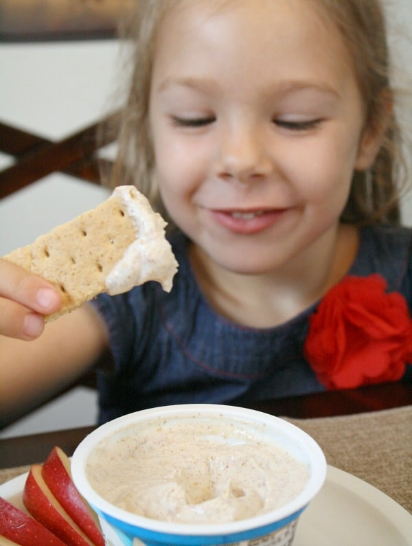 Yogurt Dip Recipe for Kids