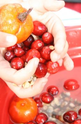 Thanksgiving Pretend Play-Cranberry Sensory Soup
