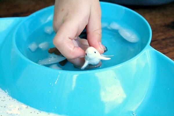 Arctic Animal Pretend Play