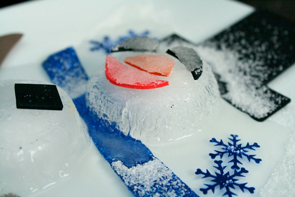 Salt and Ice Science Experiment