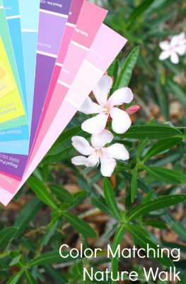 Color Matching Nature Walk-Spring Activity for Preschoolers