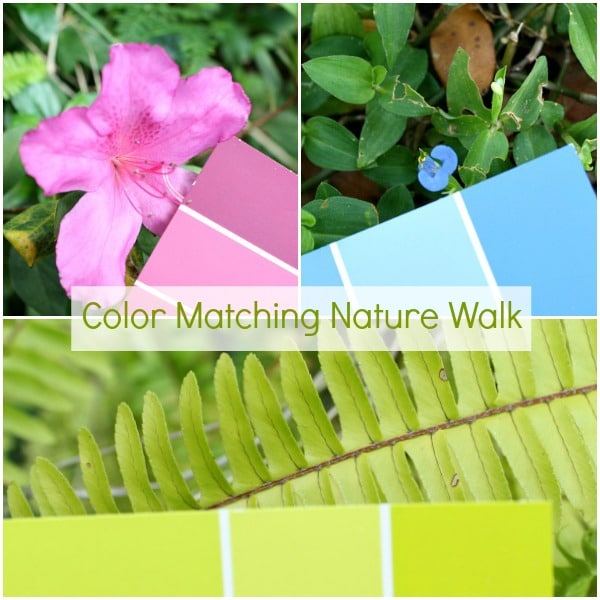 Preschool Science-Colo Matching Nature Walk