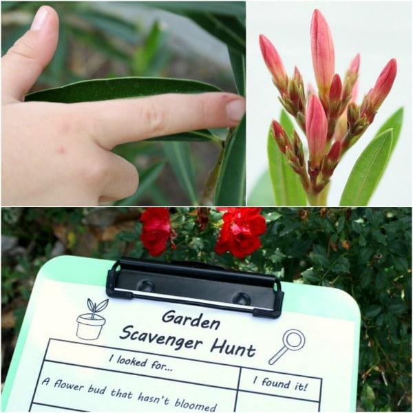 Free printable garden scavenger hunt for kids