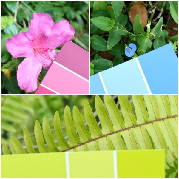 Preschool Nature Hunt-Color Matching